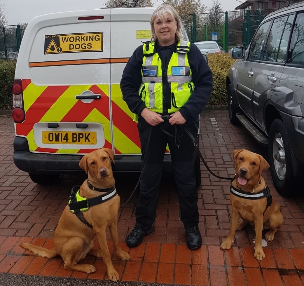 Ashridge Group supports Milton Keynes College initiative with detection dogs visit
